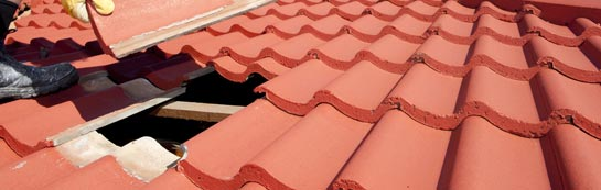 compare Tan Office roof repair quotes