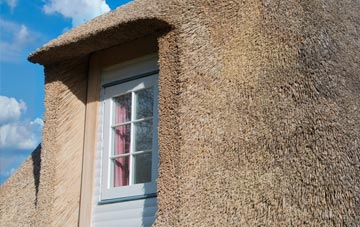 Tan Office thatch roof disadvantages