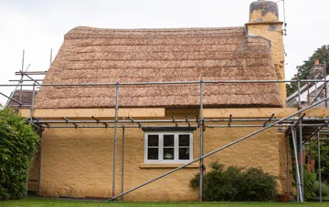 Tan Office thatch roofing costs